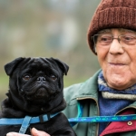 Should Seniors Have Pets? Questions to Ask